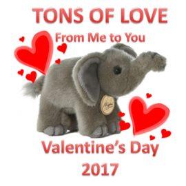 2017 Valentine Adopt