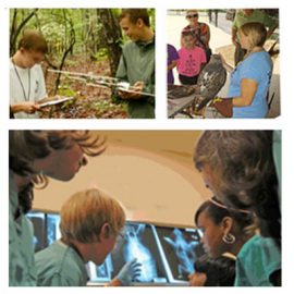 North Carolina Zoo Veterinary Camp! Apply Now.